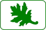 Fustella foglia oak 25mm. cod. M51 FUSTELLE MEDIE