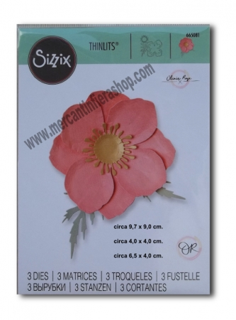 Sizzix Thinlits Icelandic Poppy SOTTILI